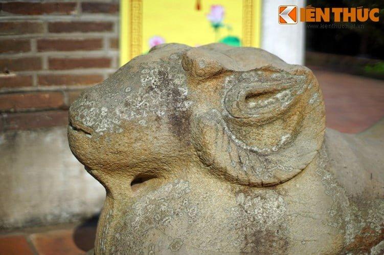 Tan muc con cuu da cuc la trong chua co Bac Ninh-Hinh-14