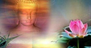 """Phật dạy: """"Bồ tát sợ nhân, chúng sinh sợ quả"""" hành động của mỗi người tốt hay xấu đều có luật nhân quả"""
