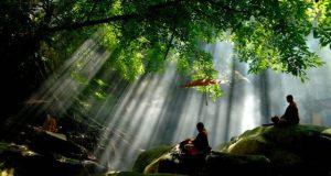 Đi lấy củi gặp nước lũ, sự ứng phó khôn ngoan của chú tiểu khiến ai cũng nên ngẫm lại mình
