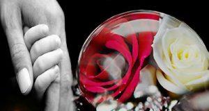 """Hiểu sao cho đúng về """"Bông hồng cài áo"""" ngày lễ Vu Lan?"""