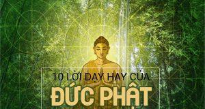 10 lời dạy của Đức Phật về cuộc sống hay nhất