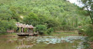 Thiền viện thật sự không phải ở trong rừng núi