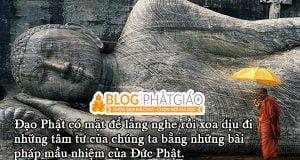 Phật pháp bất ly thế gian pháp