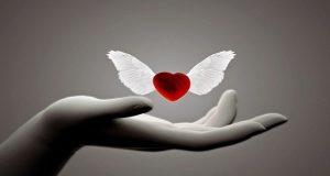 Lời Phật dạy: Yêu thương theo từ, bi, hỉ, xả để tìm được tình yêu lâu bền